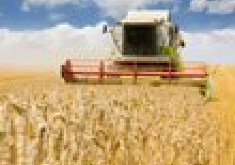Čeští farmáři zůstanou bez peněz