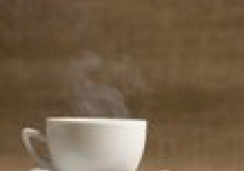 Chcete rozumět kávě? Přihlaste se na univerzitu!