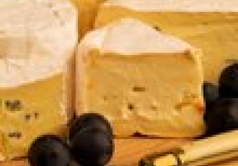 Ochutnávka sýrů