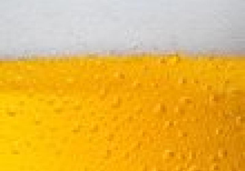 Oslavte založení pivovaru v Rakovníku
