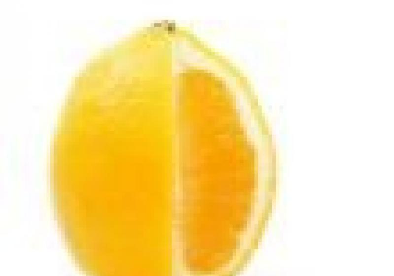 Citron do čaje