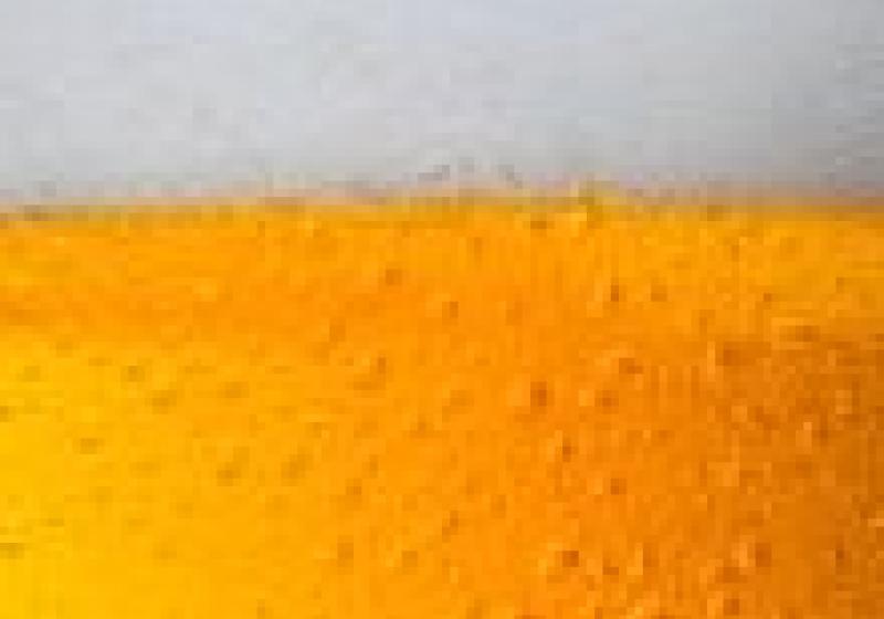 Pivní slavnosti v Humpolci