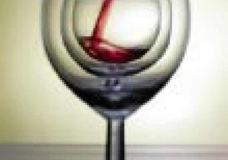 Vinaři slaví vDobřichovicích