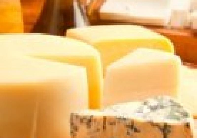 Sýrové hody
