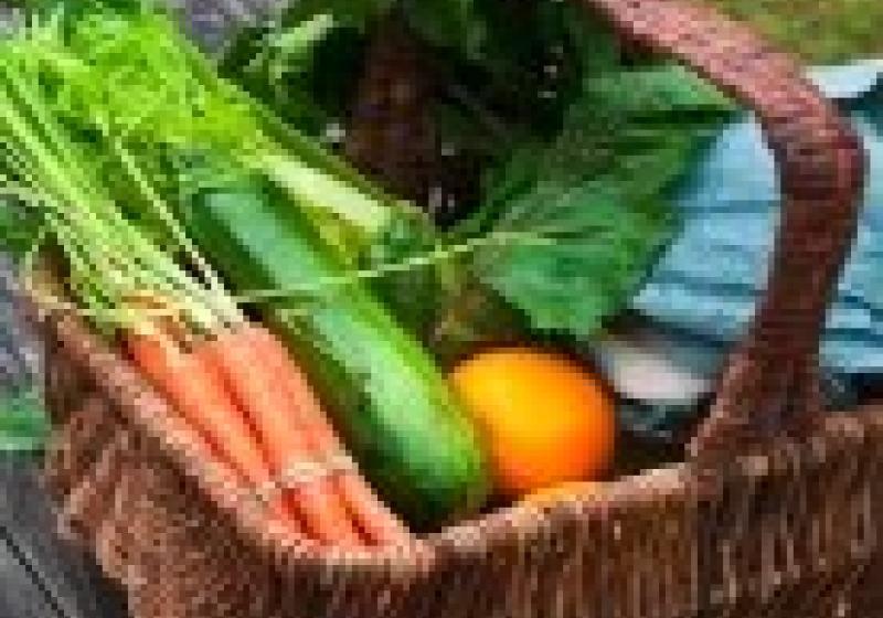 Menu z farmářských trhů
