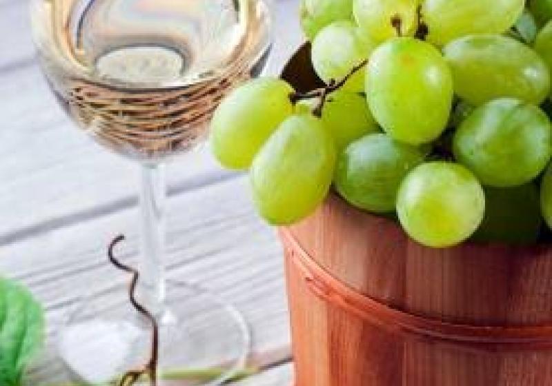 Menu s hroznovým vínem