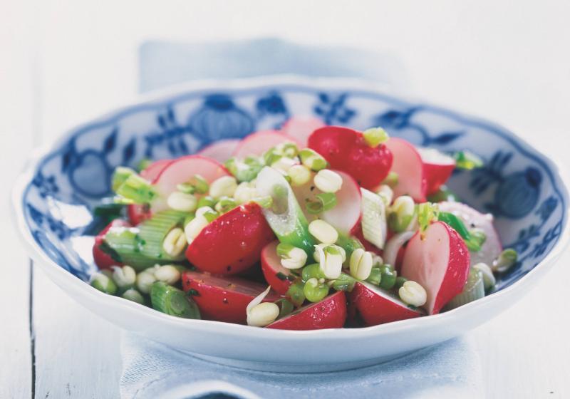 Ředkvičkový salát s mladou cibulí